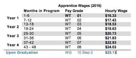 Apprentice Wages (2016)