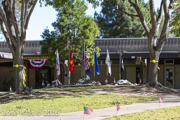 Veterans' Resource Center Flag Garden