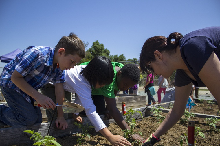 LNT student helps student plant