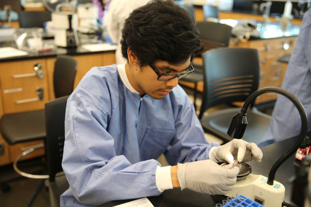 Photo of MLT Student Performing Lab Testing